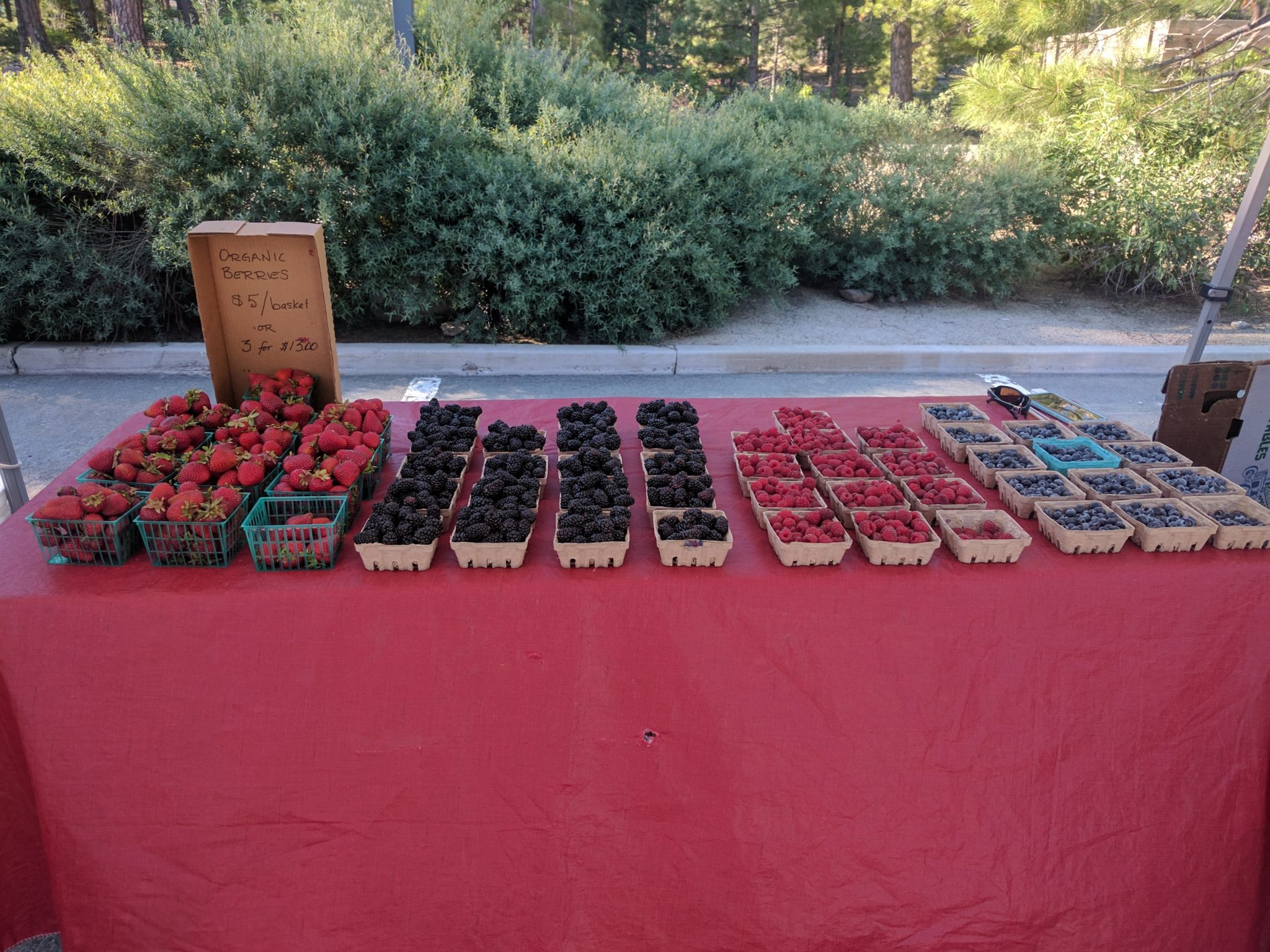 incline village farmers market