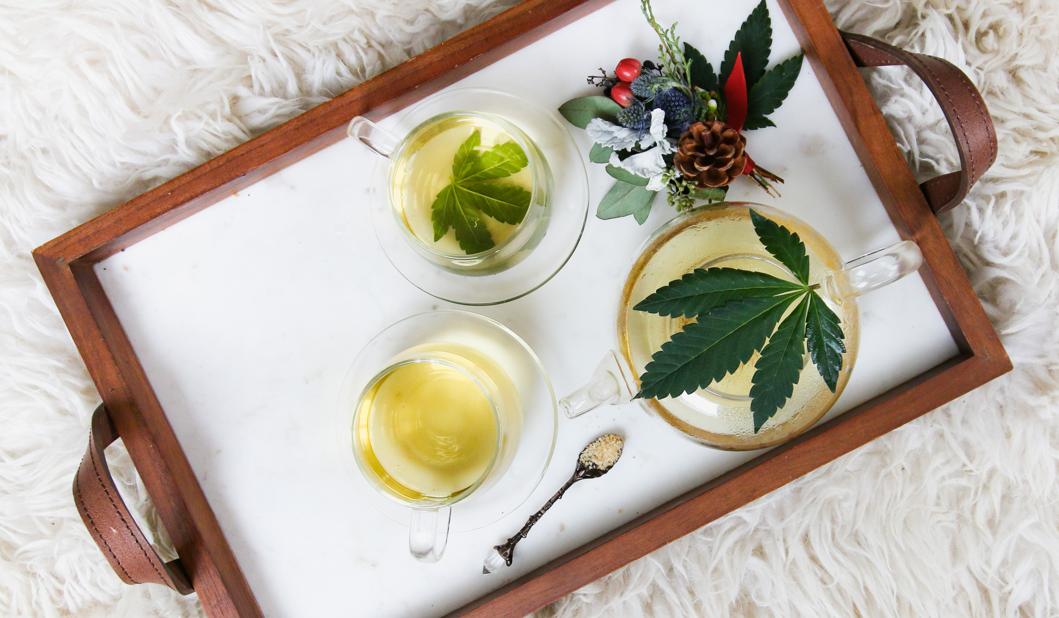 Infusions with cannabis, health and cannabis