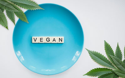 Veganism and the equanimity lifestyle