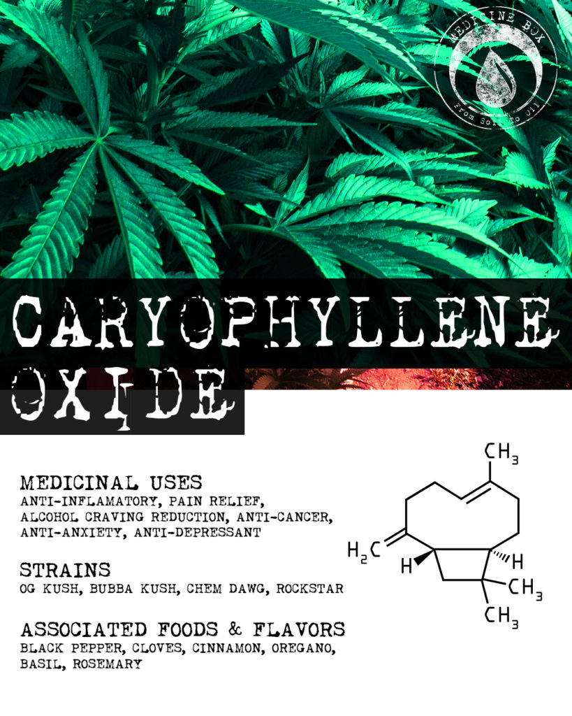 caryophyllene terpene tuesday
