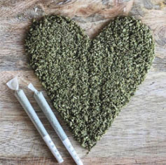 love and cannabis