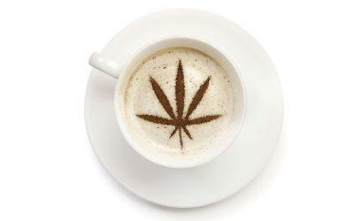 CBD and Coffee? Yes or No?