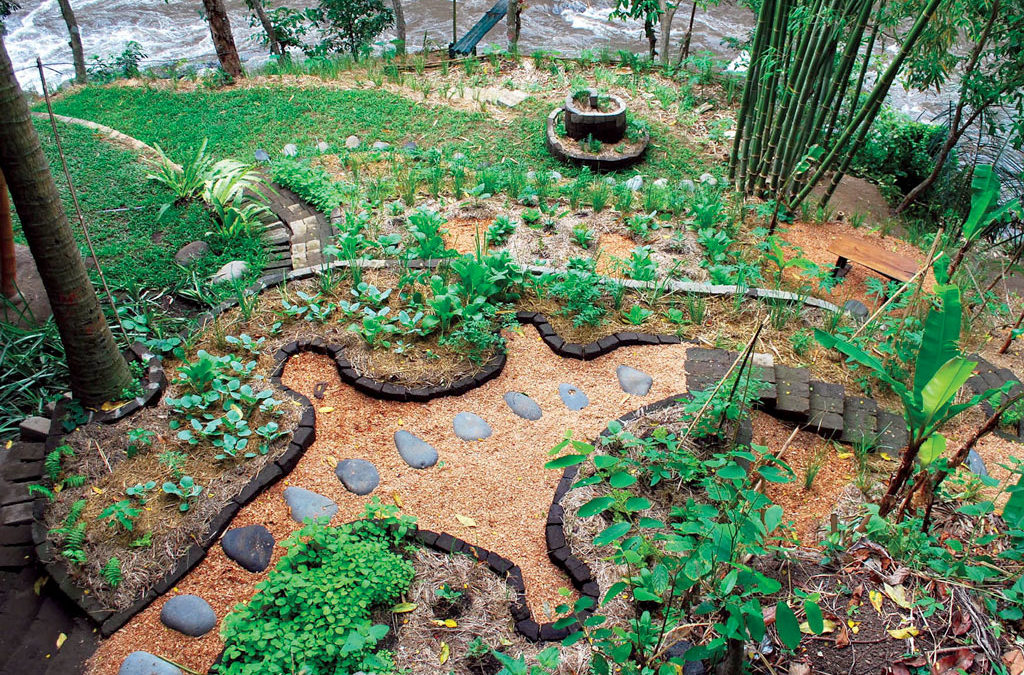 Permaculture #2: Principles of Permaculture in life & creativity