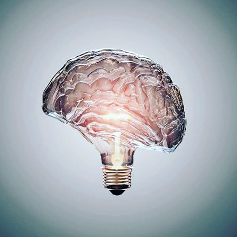 brain bulb - the power of ideas