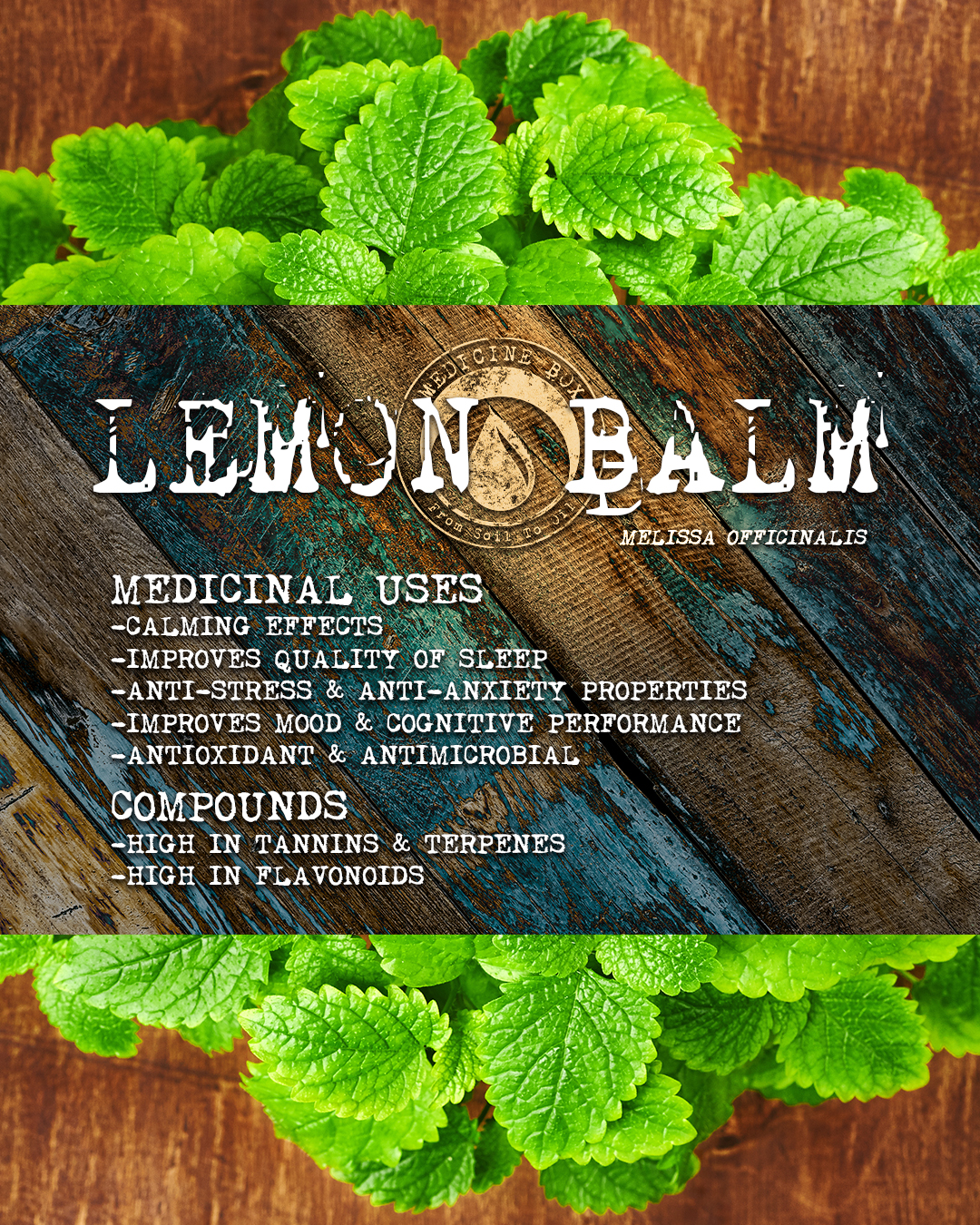cannabis tincture ingredient: lemon balm