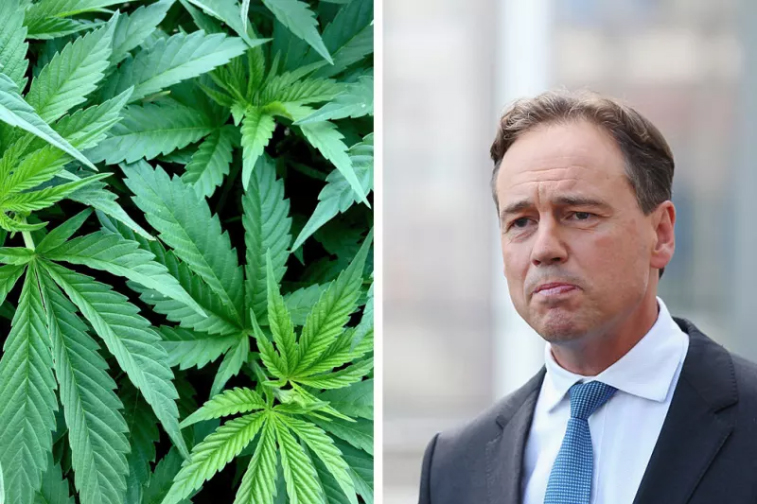 Greg Hunt, Australian Health minister says he wants Australia to become number 1 in the world for the export of medicinal Cannabis.