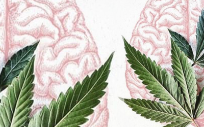 Five Instagram images that have gotten us thinking outside the (Medicine) Box